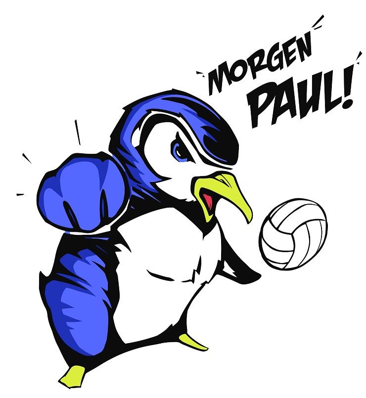 pinguin einspielshirts