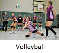 Volleyballmt